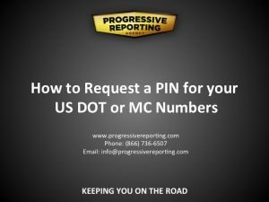 PIN Request visual